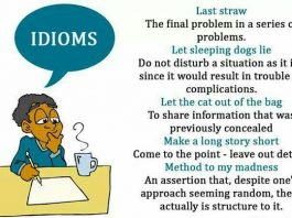 English Language Practice Paper on Idioms
