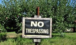 Legal Reasoning Questions on Trespass