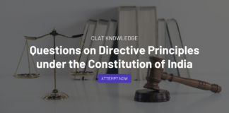 Questions on Directive Principles under the Constitution of India